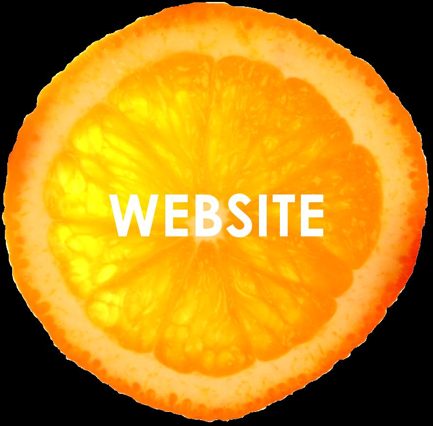 orange isolated 2 website.png