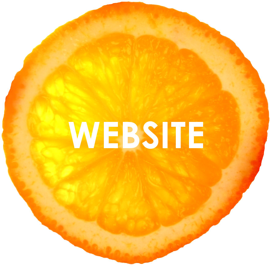 orange isolated 2 website.png