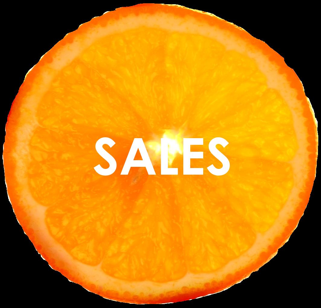 orange isolated 3 SALESa.png